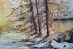 forêt-fantastque-4