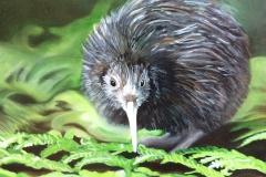 kiwi-ihuile-150€
